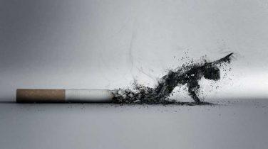 traditional-smoking-ingredients